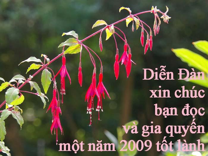 Chúc mừng 2009