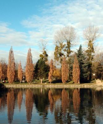Công viên đầu mùa đông