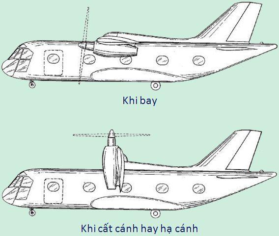 hinh-5