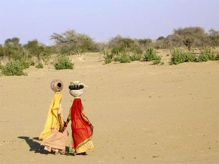 sari - desert