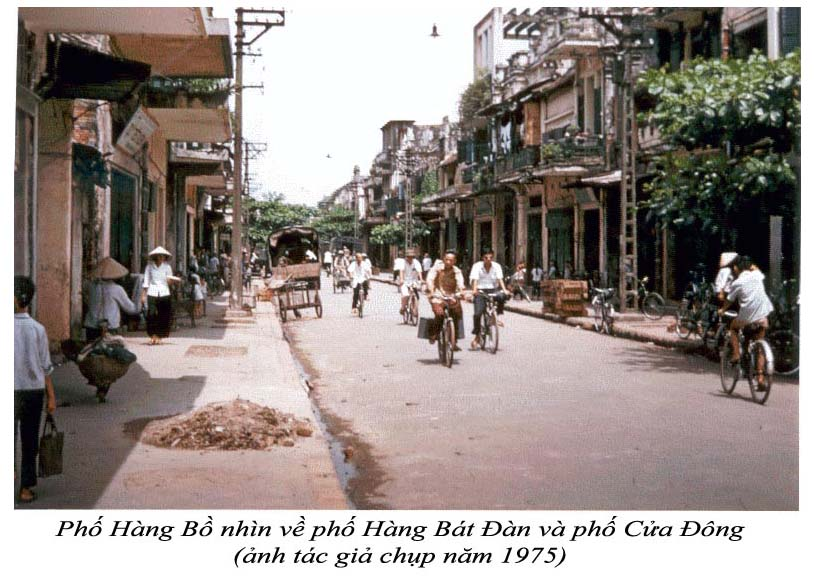 PhoHangBo